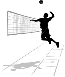 Volleyballer