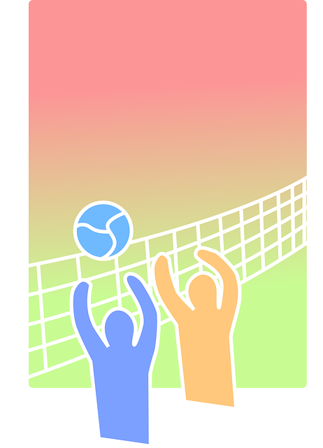 volleyball 155666 640