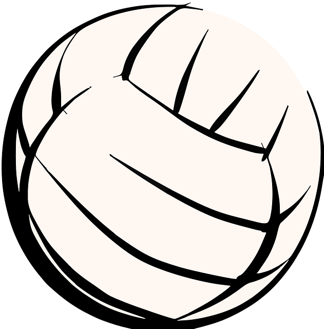 volleyball 307323 640